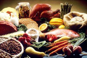 alternatieve eiwitbronnen